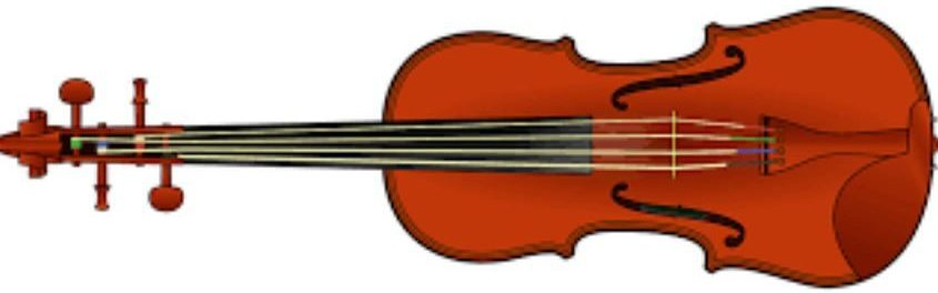 Beloved Violins